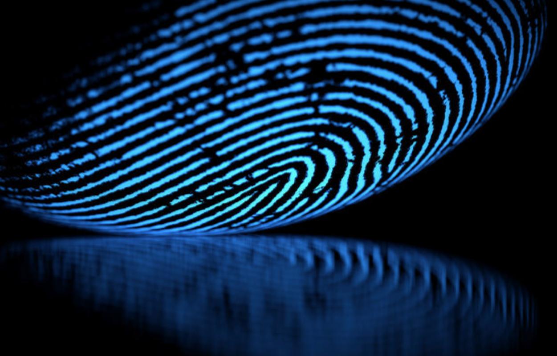 Live Scan Digital Fingerprinting